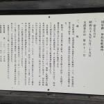IMG_7146